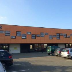 Location Bureau Loos 81 m²