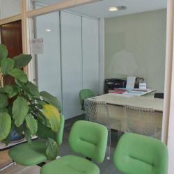 Vente Bureau Lyon 6ème 88 m²