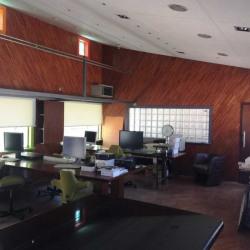 Location Bureau Cagnes-sur-Mer 1240 m²