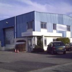 Location Local d'activités Chassieu 1080 m²