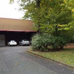 Vente Entrepôt Dammarie-les-Lys 1787 m²