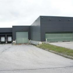 Location Local d'activités Saint-Jean-Bonnefonds 3848 m²