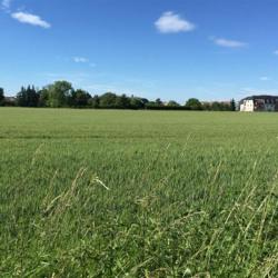 Terrain  de 607 m²  Wittenheim  (68270)