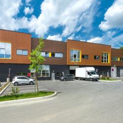 Location Local d'activités Villebon-sur-Yvette 341 m²