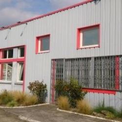 Vente Local d'activités Chanteloup-les-Vignes 480 m²