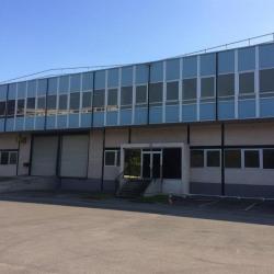 Location Local d'activités Argenteuil 1053 m²