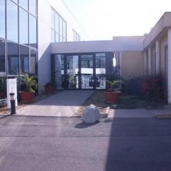 Location Bureau Castelnau-le-Lez 62,5 m²