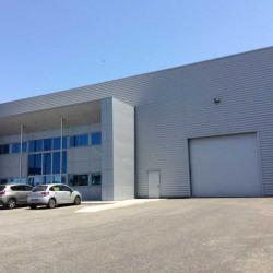 Location Local d'activités Toulouse 880 m²