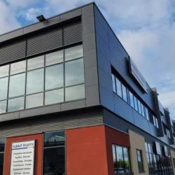 Location Local d'activités Villeneuve-la-Garenne 444 m²