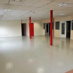 Location Local d'activités Le Plessis-Pâté 500 m²