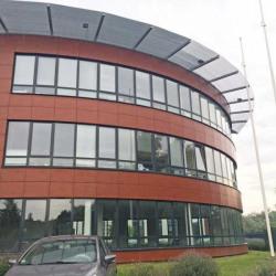 Location Bureau Saint-André-lez-Lille 305 m²