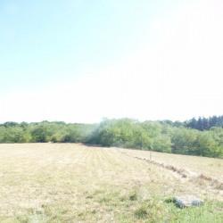 Vente Terrain Francheville 500 m²