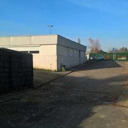 Location Local d'activités Les Ulis 248 m²