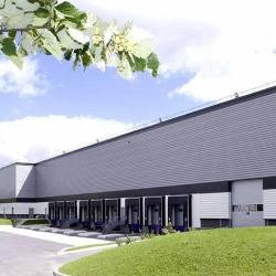 Location Entrepôt Bussy-Saint-Georges 5321 m²