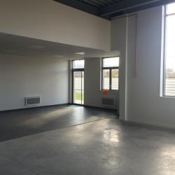 Location Local d'activités Le Blanc-Mesnil 423 m²