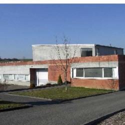 Location Local d'activités Wasselonne 978 m²