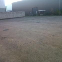 Location Local d'activités Champigny-sur-Marne 2520 m²