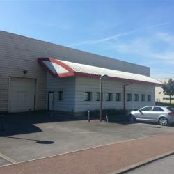 Location Local d'activités Créteil 266 m²