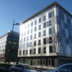 Vente Bureau Annemasse 297 m²