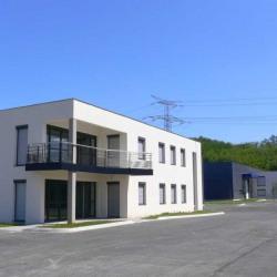 Location Local d'activités Toussieu 2726 m²