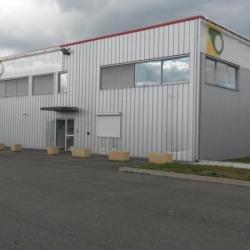 Location Local d'activités Saint-Sauveur 500 m²