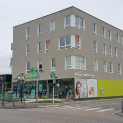 Vente Bureau Laneuveville-devant-Nancy 339 m²