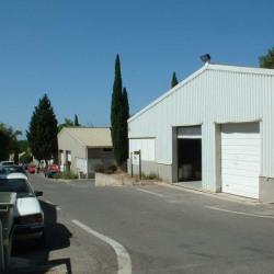 Location Entrepôt Marseille 15ème 600 m²