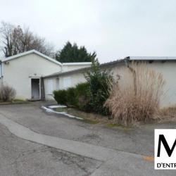 Location Local d'activités Limonest 260 m²