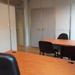 Location Bureau Lyon 2ème 15 m²