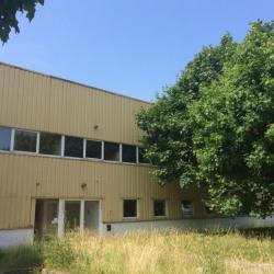 Location Local d'activités Coignières 1985 m²