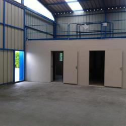 Location Local d'activités La Frénaye 950 m²