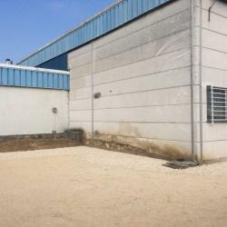 Location Entrepôt Wissous 204 m²