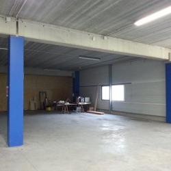 Location Local d'activités Stains 300 m²