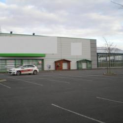 Location Local commercial Cosne-Cours-sur-Loire 2597 m²