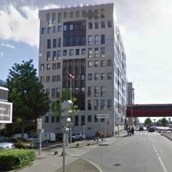 Location Bureau Montigny-le-Bretonneux 234 m²