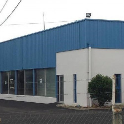 Location Local commercial Fenouillet (31150)