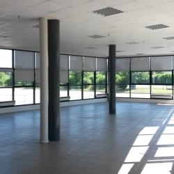 Location Entrepôt Châtres 17823 m²