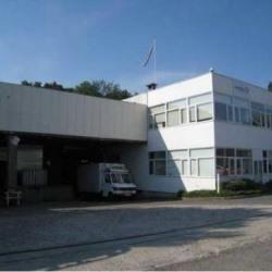 Location Local d'activités Domont 5000 m²