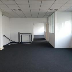 Location Local d'activités Bonneuil-sur-Marne 2876 m²