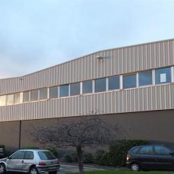 Location Local d'activités Irigny 960 m²