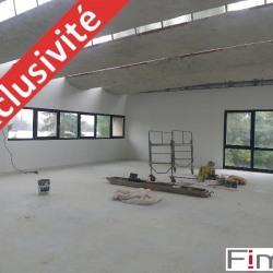Location Local d'activités Palaiseau 166 m²