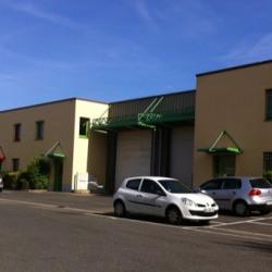 Location Local d'activités / Entrepôt Pontault-Combault