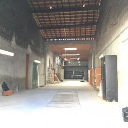 Location Local d'activités Toulouse 180 m²