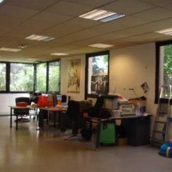 Vente Local d'activités Neuilly-sur-Marne 4840 m²