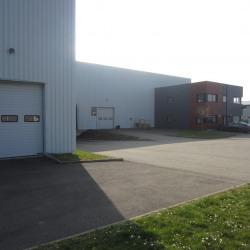 Location Local d'activités Erstein 2701 m²