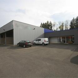 Vente Bureau Épinal 740 m²