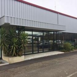 Location Local d'activités Rennes 585 m²
