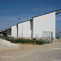 Location Local d'activités Semoutiers-Montsaon 2500 m²