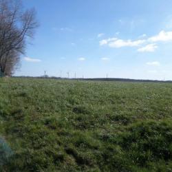 Terrain  de 1500 m²  Touffreville-sur-Eu  (76910)