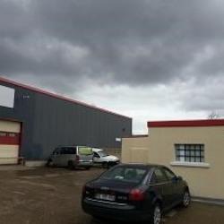 Vente Local d'activités / Entrepôt Yerres